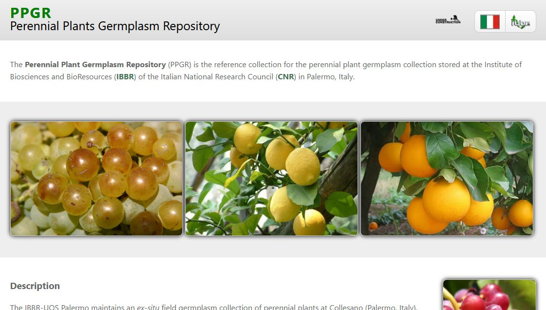 The home page of the Perennial Plants Germplasm Repository (PPGR)
